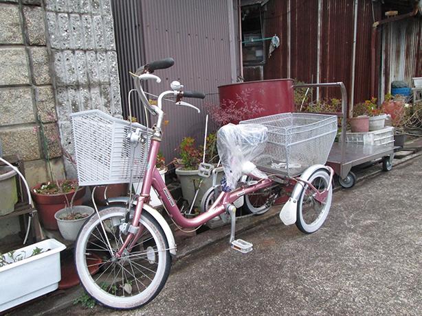 4島内で大活躍する三輪車